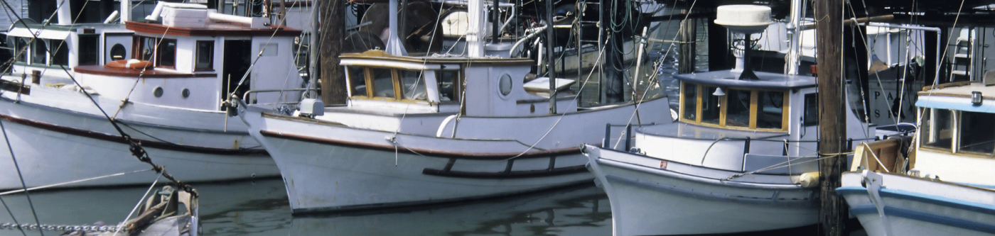 rockport fishing boat